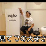 【カズチャンネル】アメリカの商品、人をダメにするソファーを買ってみた!